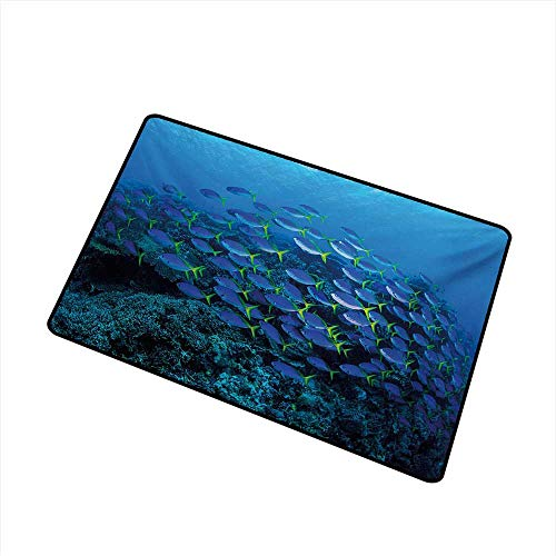 Becky W Carr Fish Universal Door mat Shoal of Fish on Stony Plant Animals in Submarine and Sun Beams on The Surface Image Door mat Floor Decoration W31.5 x L47.2 Inch,Multicolor