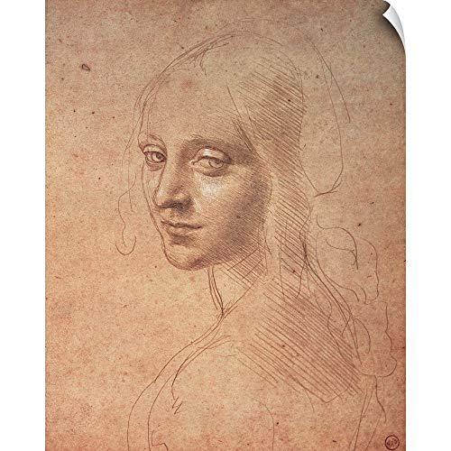 - CANVAS ON DEMAND Leonardo da Vinci Wall Peel Wall Art Print Entitled Portrait of a Girl, by Leonardo da Vinci, 1483-1484. Royal Library, Turin, Italy 16