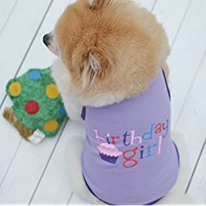 Birthday Girl Print Tank Top Vest T-Shirt for Pet Puppy Summer Clothes for Small Dogs (XS, Purple)