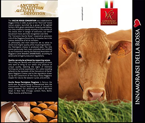 Parmigiano Reggiano PDO''Vacche Rosse/Red cows'' seasoned 40/48 months, 2,2 lbs (kg.1) by Parmigiano Reggiano Vacche Rosse (Red cows) (Image #2)
