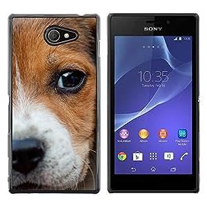 TopCaseStore / la caja del caucho duro de la cubierta de protección de la piel - Beagle Puppy Nose Eyes Dog Baby - Sony Xperia M2