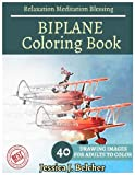 img - for BIPLANE Coloring book for Adults Relaxation Meditation Blessing: Sketches Coloring Book 40 Grayscale Images book / textbook / text book