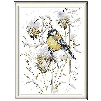Amazon.com: Juguete para pájaros – Kit de bordado de punto ...