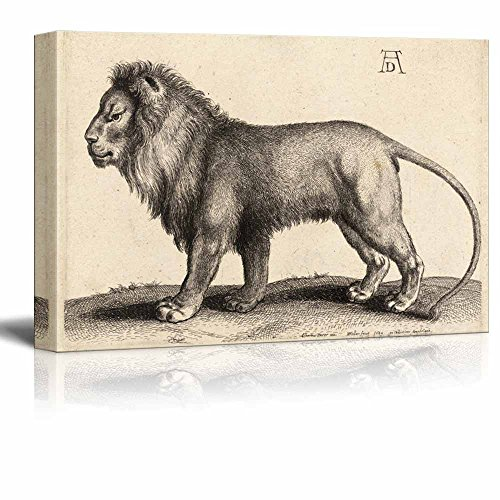 A Lion Standing after Durer State 1 by Wenceslaus Hollar Print Famous Painting Reproduction