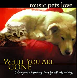 While You Are Gone: Music Pets Love