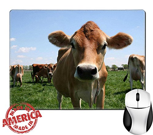 "Luxlady Natural Rubber Mouse Pad/Mat with Stitched Edges 9.8"" x 7.9"" IMAGE ID: 449914 A beautiful female Jersey cow in pasture"