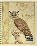 Lang Sanctuary Owl Spiral Bound Sketchbook by Susan Winget, 10 x 11.25 Inches (4006027)