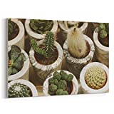 Westlake Art - Canvas Print Wall Art - Plant Cactus on Canvas Stretched Gallery Wrap - Modern Picture Photography Artwork - Ready to Hang - 18x12in (*7x-311-237)