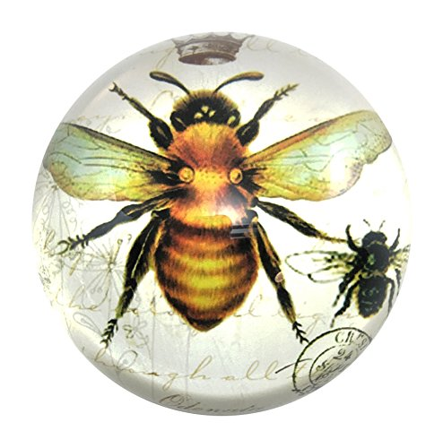 Imperial Honey Bee Glass Dome would be a stylish bee theme gift