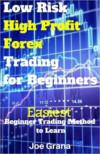 Mobibook download Low Risk High Profit Forex Trading for Beginners 1519677944 PDF iBook