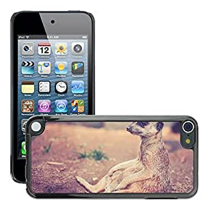 Hot Style Cell Phone PC Hard Case Cover // M00109342 Meerkat Animal Africa Desert Nature // Apple ipod Touch 5 5G 5th