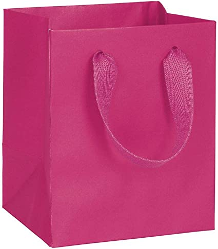 : Fifth Avenue Fuchsia Manhattan Eco Euro Shoppers