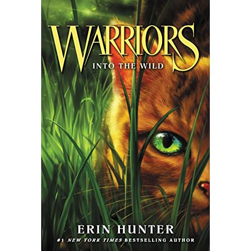 Warriors The New Prophecy Book 5: Warrior Cat: Amazon.com