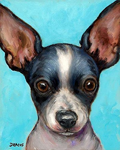 Border Big Bold (Chihuahua Dog Art Print, Black and White Chihuahua, on Light Blue Background, with Big Black Ears, Print of Original Dog Painting by Dottie Dracos,)