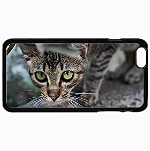 Customized Cellphone Case Back Cover For iPhone 6 Plus, Protective Hardshell Case Personalized Cat Cat Band Leaves Peeps Black