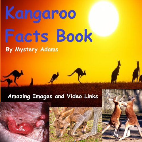 Kangaroos Facts Book for Kids - Amazing Fun Facts About Kangaroos (Kangaroo Rat Stuffed Animals)