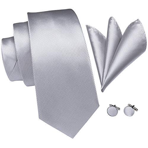 Necktie Silver Grey Necktie - 6