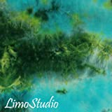 LimoStudio 6 X 9 Ft Photo Studio Bottle Green Cloudy Hand Dyed Backdrop Backgrounds, AGG1354