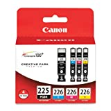Canon PGI-225BK Black and CLI-226 C/M/Y ...
