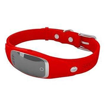 ZHENGDY Mascota Collar Resistente Al Agua Localizador GPS para Perros Y Gatos,Localizador Anti-Perdida Anti-Robo De Dispositivos De Alarma,Red: Amazon.es: ...