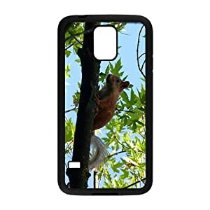 Squirrel Climbing a Tree Hight Quality Plastic Case for Samsung Galaxy S5