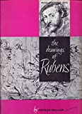 img - for The Drawings of Rubens book / textbook / text book
