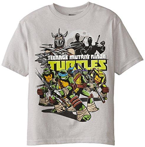 Teenage Mutant Ninja Turtles Little Boys' TMNT Group and Villains Tee, Silver, 5/6