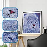 Mr.Macy Home Decor Craft Special Shaped Diamond Painting DIY 5D Partial Drill Cross Stitch Kits Crystal R
