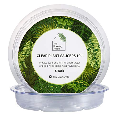 The Blooming Jungle Clear Plant Saucers 5 Pack of 10 Inch Circular Plant Drip Trays - Sturdy and Durable Vinyl Plastic - Perfect Waterproof Plant Tray Without Holes for Use Indoor and Outdoor