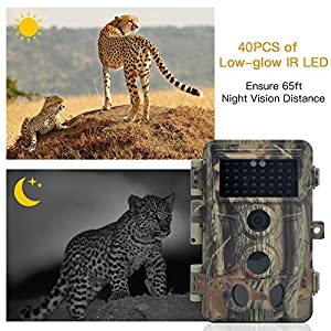 DigitNow! Trail Camera 16MP 1080P HD Waterproof, Wildlife Hunting Scouting Game Camera with 40Pcs IR LED Infrared Night Vision Up to 65FT/20M, Surveillance Camera 130° Wide Angle 120° Detection