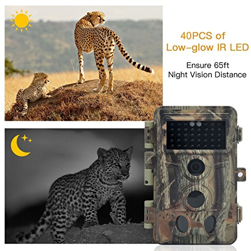 DIGITNOW Trail Camera 16MP 1080P HD Waterproof, Wildlife Hunting Scouting Game Camera with 40Pcs IR LED Infrared Night Vision Up to 65FT /20M, Surveillance Camera 130° Wide Angle 120° Detection by DIGITNOW (Image #2)