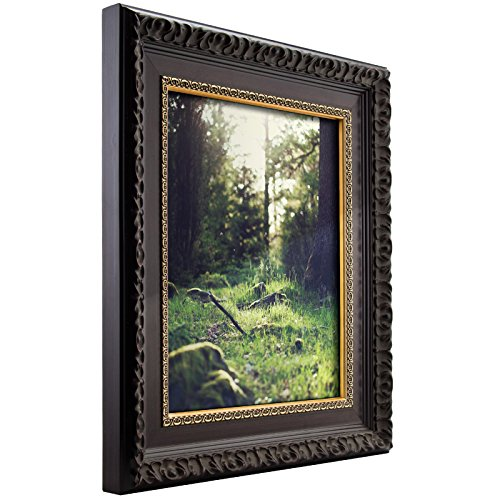 Craig Frames Devereux, 20 by 24-Inch Picture Frame, Antique Brushed Mahogany with Ornate Gold