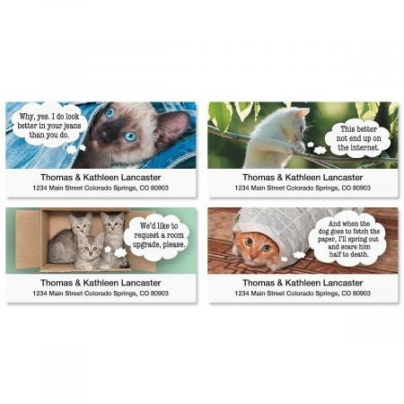Cat Return Address Labels - Cattitudes Animal Return Address Labels (4 Designs) - Set of 144 1-1/8 x 2-1/4 Self-Adhesive, Flat-Sheet cat labels