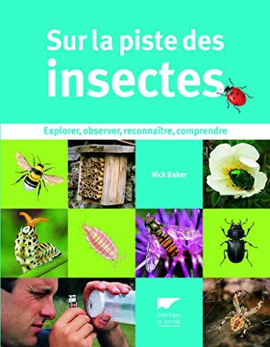 Sur la piste des insectes. Explorer, observer, reconnaître, comprendre