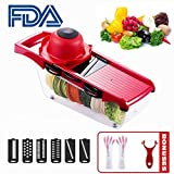 HKYUSHINE 6+1 Mandoline Slicer Vegetable Julienne Slicer, 6 Interchangeable Blades with Peeler, Hand Protector,Storage Container - Cutter for Potato,Tomato, Onion, Cucumber,Cheese,Garlic etc