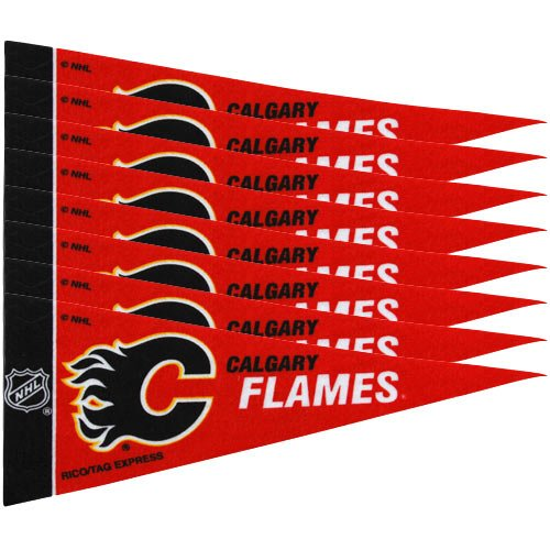 Rico NHL Flames 8 Pc Mini Pennant Pack Sports Fan Home Decor, Multicolor, One Size by Rico