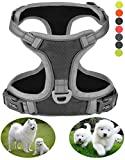 GAUTERF Small Dog Harnesses, Best Pet Supplies Dogs Harnesses Pet Vest Harness No Front Pull Range Adjustable Dog Harness 3M Reflective Technology Pet Vest Puppy Dog Harnesses(Small,Black/Grey)