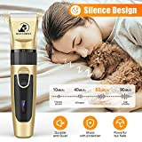 Bonve Pet Dog Clippers, Professional Dog Grooming
