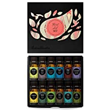 First Aid Essential Oil 12/10 ml Set- 100% Pure Therapeutic Grade Oils- (Comparable to Doterra's Family Physician Kit) Breathe Easier, Digest Ease, Eucalyptus (globulus), Fighting Five (previously known as Four Thieves), Head Ease, Lavender, Lemon, M