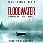 Floodwater | Sean Thomas Fisher