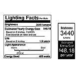 Feit Electric 400R/FL 400-Watt R40 120-Volt