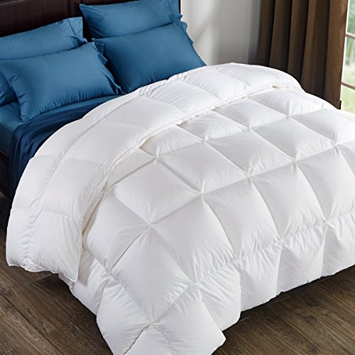 Puredown 800 Fill Power White Goose Down Comforter 700