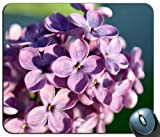 lilac flowers petals close up 108712 Generic Customized Rubber Mousepad Gaming Mouse Pad