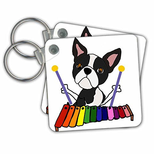 - 3dRose Funny Cute Boston Terrier Dog Playing Xylophone Music Art Key Chain (kc_264009_1)
