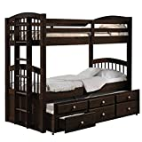 twin over full espresso bunk bed - ACME Furniture 40000 Micah Bunk Bed with Trundle and 3 Drawers, Espresso, Twin over Twin