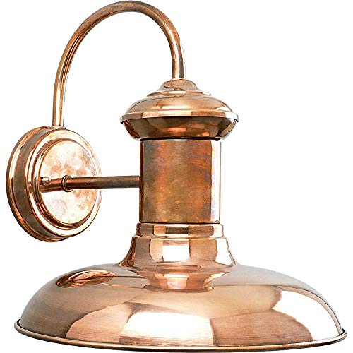 Copper Outdoor Wall Light - Progress Lighting P5723-14 1-Light Wall Lantern, Copper