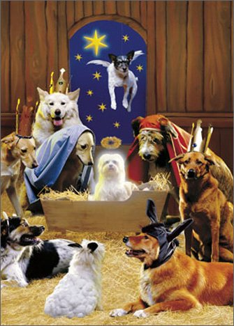 Ten Magnificent Mutts Avanti Christmas