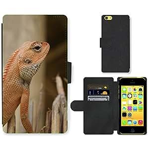Super Stella Cell Phone Card Slot PU Leather Wallet Case // M00104592 Lizard Nature Reptile // Apple iPhone 5C
