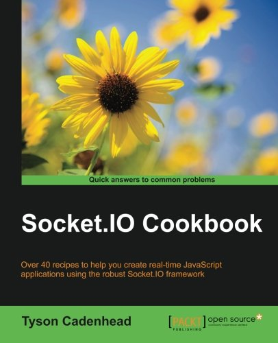 Socket.IO Cookbook pdf