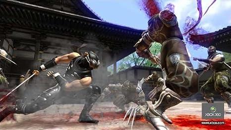 Ninja Gaiden 2 [Importación francesa]: Amazon.es: Videojuegos